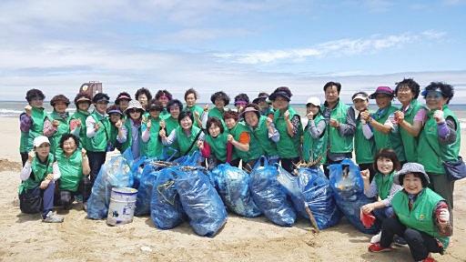강원 삼척시새마을회, 환경정화활동