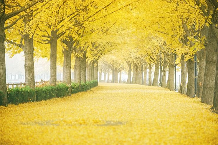가을 걷기 좋은 여행