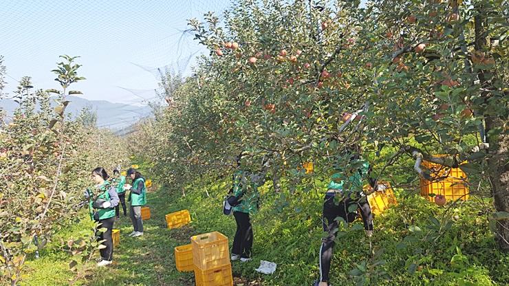 광주, 농촌봉사활동