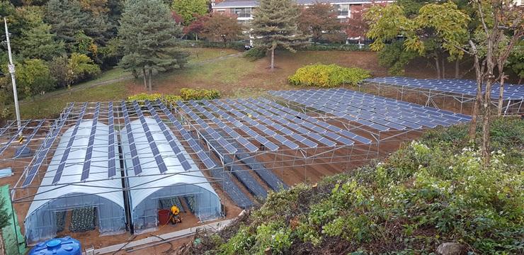 농업의 지속 가능성과 재생에너지 확산
