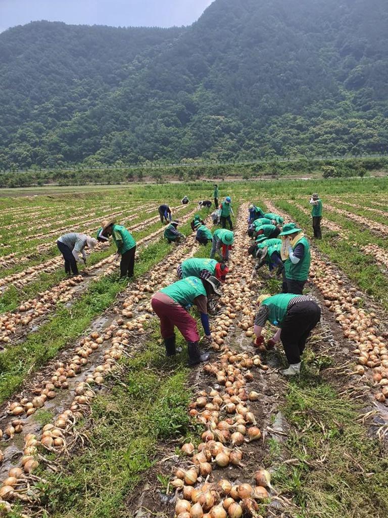 전북, '우리농촌 사랑해 운동'