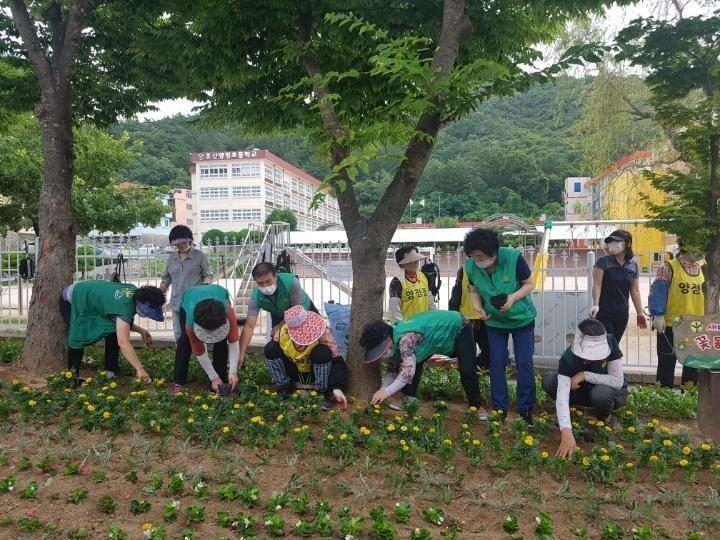울산 북구 양정동협의회와 부녀회, 여름꽃 추가로 심어