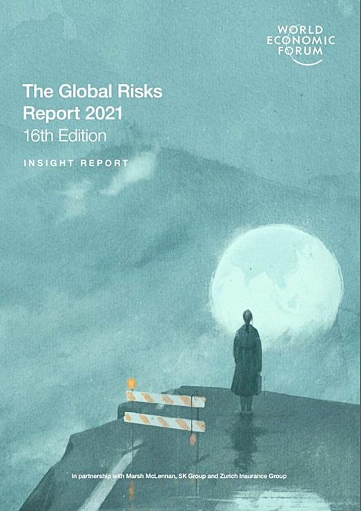 2021 세계위험보고서