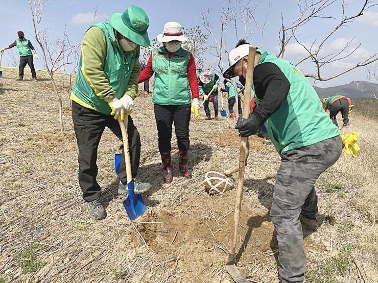 경북 울진군새마을회,  식목일 기념 나무심기