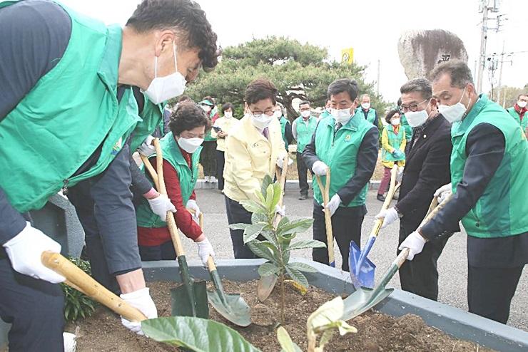 건강한 지구를 위해 1회원 1나무 심기