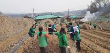충북 제천시새마을회, 농촌 일손돕기 활동