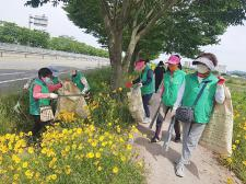 경남 가야읍협의회와 부녀회,환경정화활동