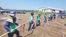 대전시협의회, 집중호우 피해 농가 복구활동